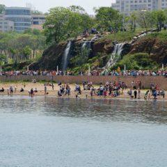23 мая на Русском острове пройдет «День путешественника»