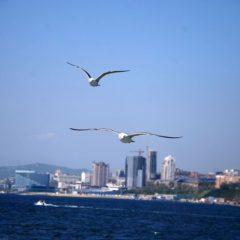 Vladivostok Boat Show снова состоится во Владивостоке