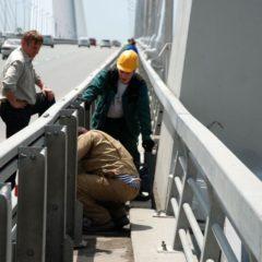 Жизнь на Золотом мосту