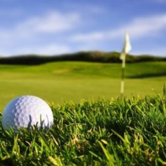 Остров Русский может стать центром гольф-туризма